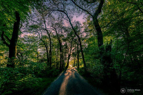 zaheer khan photography webzstudio -0702